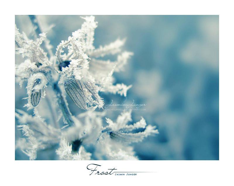 Frost by kuschelirmel