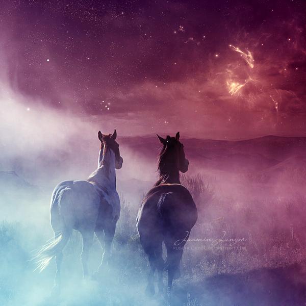 Wild Horses by kuschelirmel