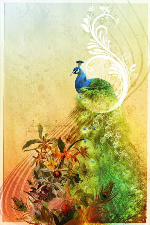 Peacock Postcard by kuschelirmel