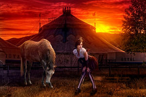 Welcome to our Circus by kuschelirmel