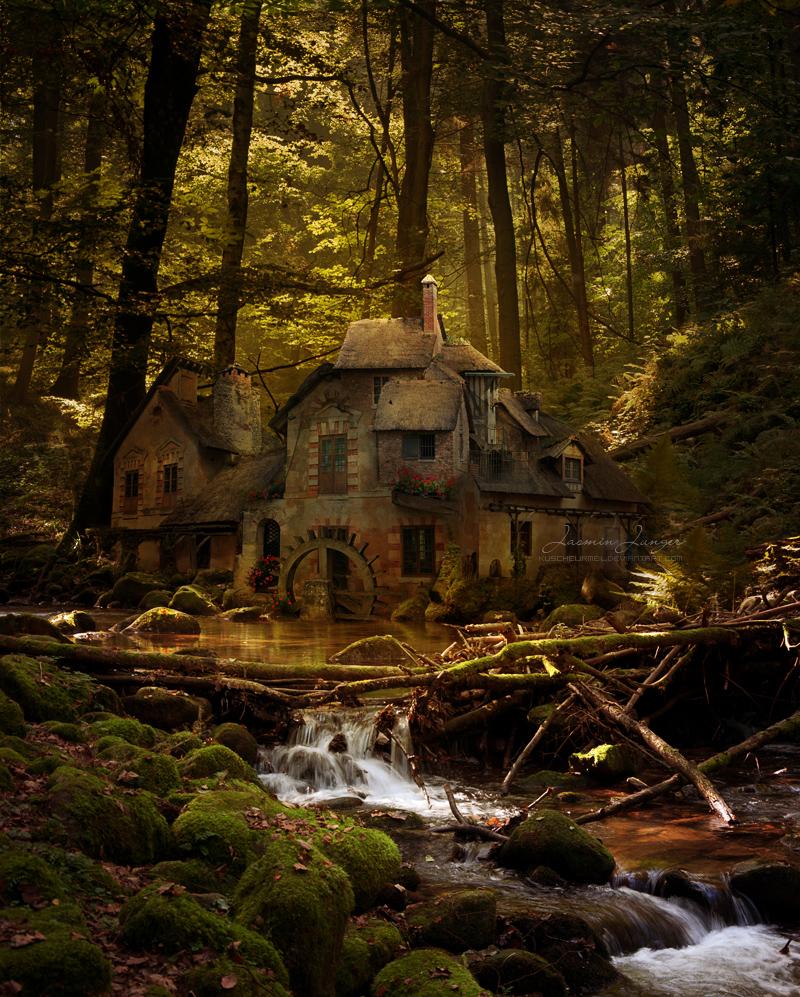 Black Forest River by kuschelirmel