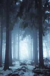 Into the Light by kuschelirmel