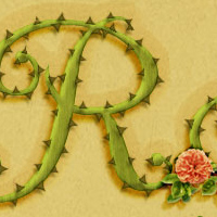 Photoshop-rose-text-1 by kuschelirmel