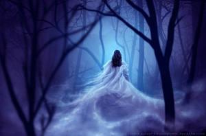 Haunted Forest by kuschelirmel