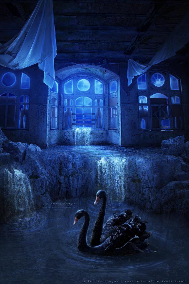 Black Swan Lake by kuschelirmel