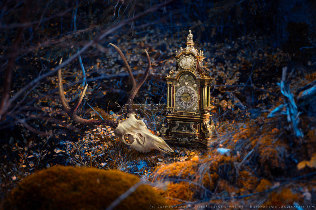 Reflection on Mortality by kuschelirmel