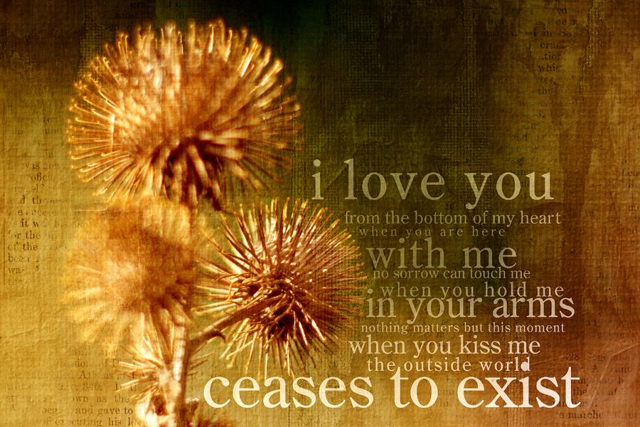 Declaration of Love by kuschelirmel
