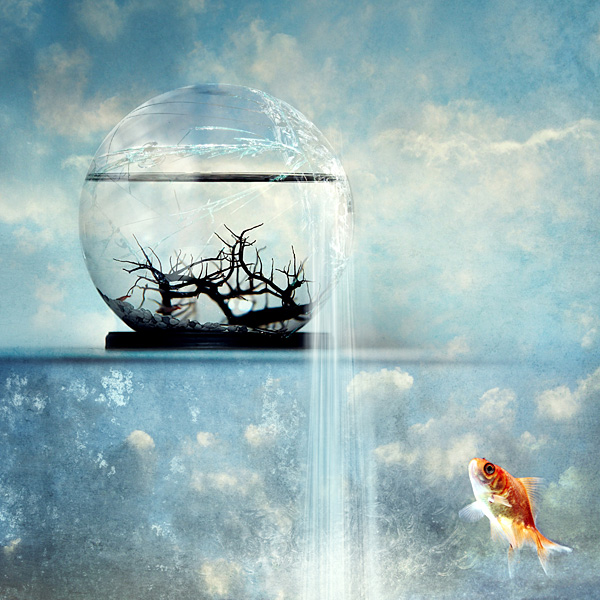 Change We Can Believe In >> A Change of Perspective by kuschelirmel on DeviantArt