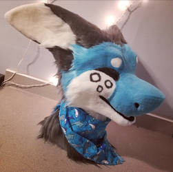 a good boy by starsheeb