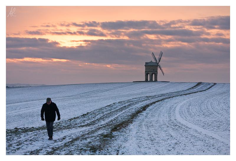 Winter Walker by Meowgli