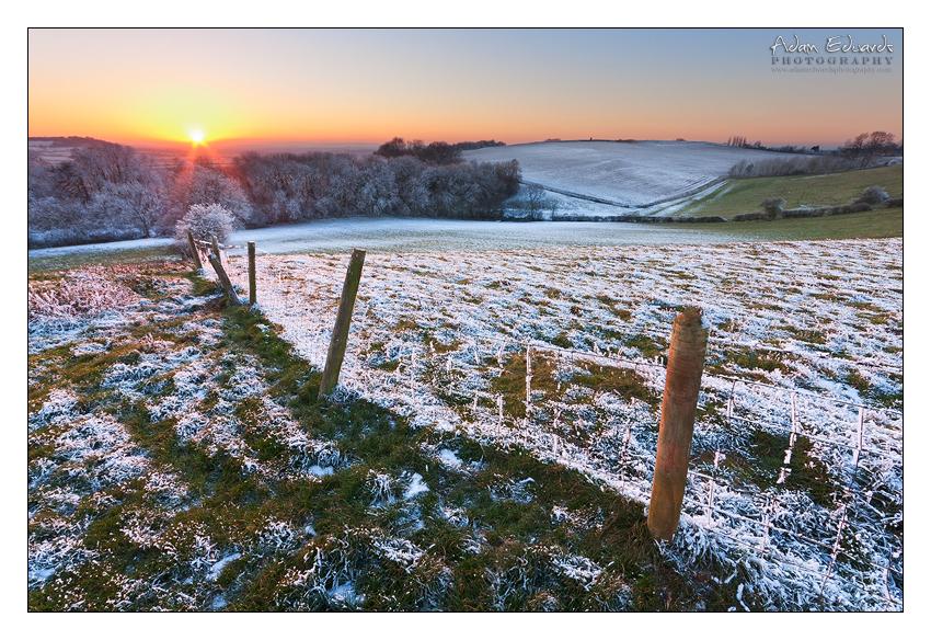 Winter Warmer by Meowgli