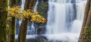 Waterfall Country: Autumn