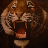 tiger by marine-artist-james