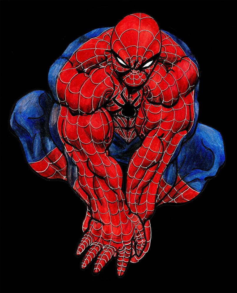 Spiderman By StormKerr On DeviantArt