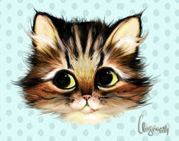 Jannis the Kitty by Ainiwaffles