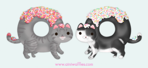 Kitty Donuts