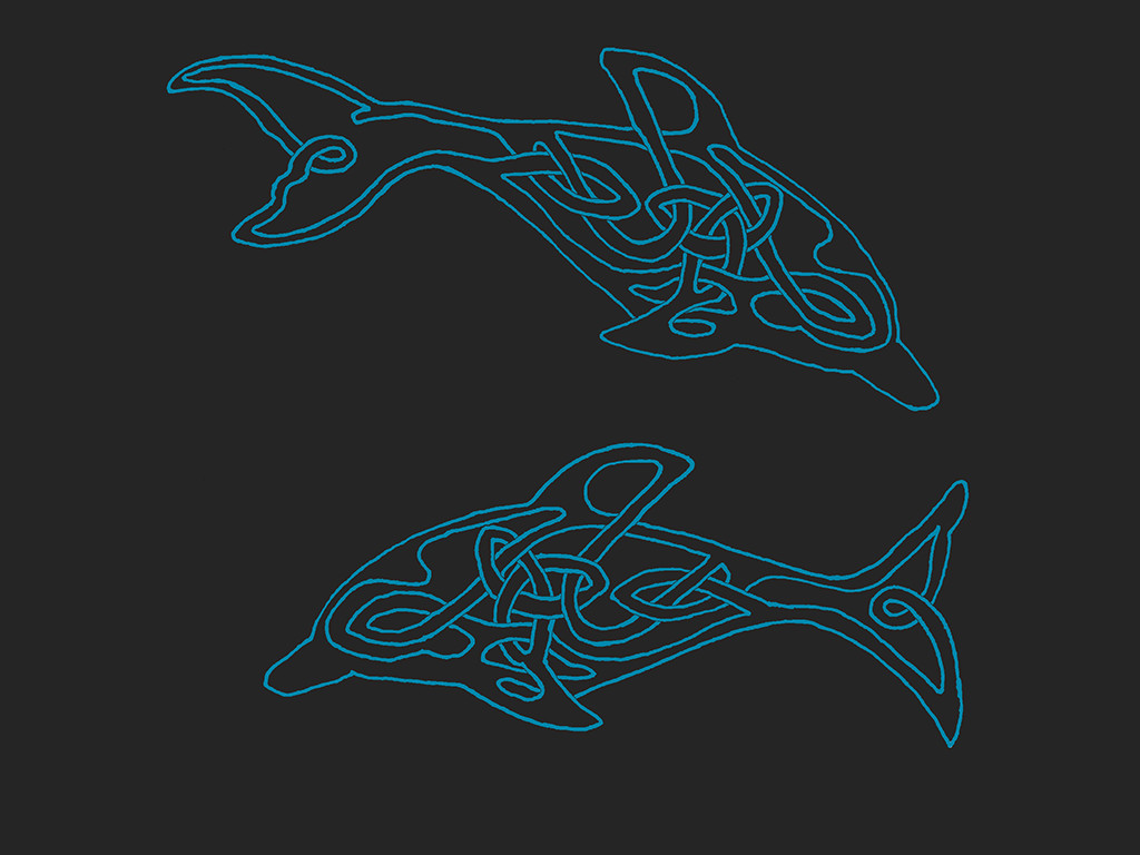 Dolphins by AYSO00