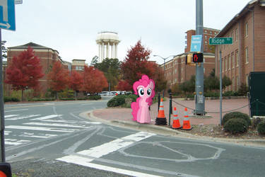 Pinkie Pie at Chapel Hill, NC by pizzalover53