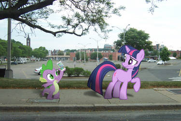 Twilight Sparkle and Spike, Library Hunting