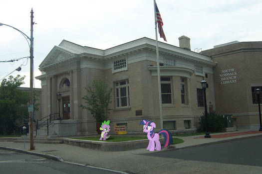 Twilight and Spike found the Library