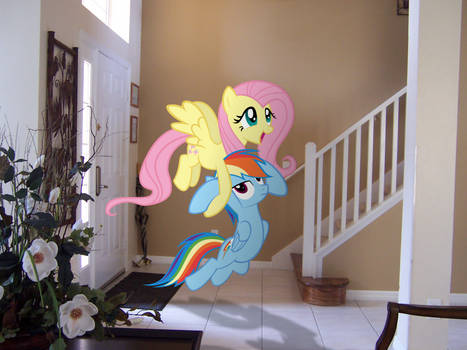 Rainbow and Fluttershy on Vacation