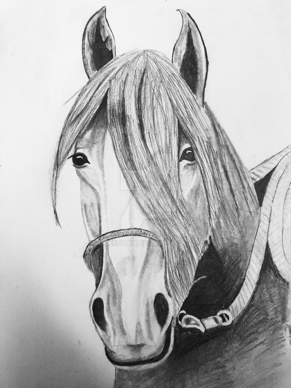 Horse by nikkeetah