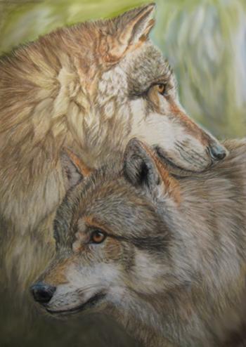 Wolf mates by Acaciaca...