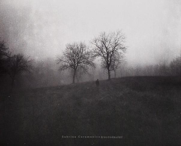 : Presence : by sabbbriCA