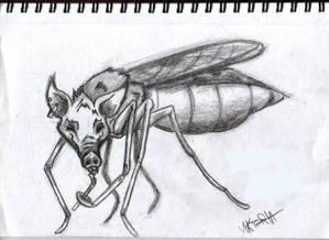 pig mosquito