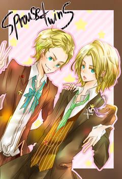 Marvelous Twins