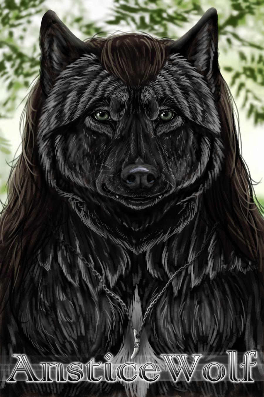 AnsticeWolf's Profile Picture