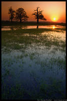 Sunset by mprudlak