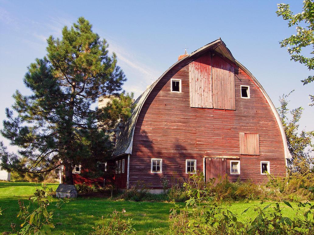 Barn To Be Wild by TheArtOfaMadMan