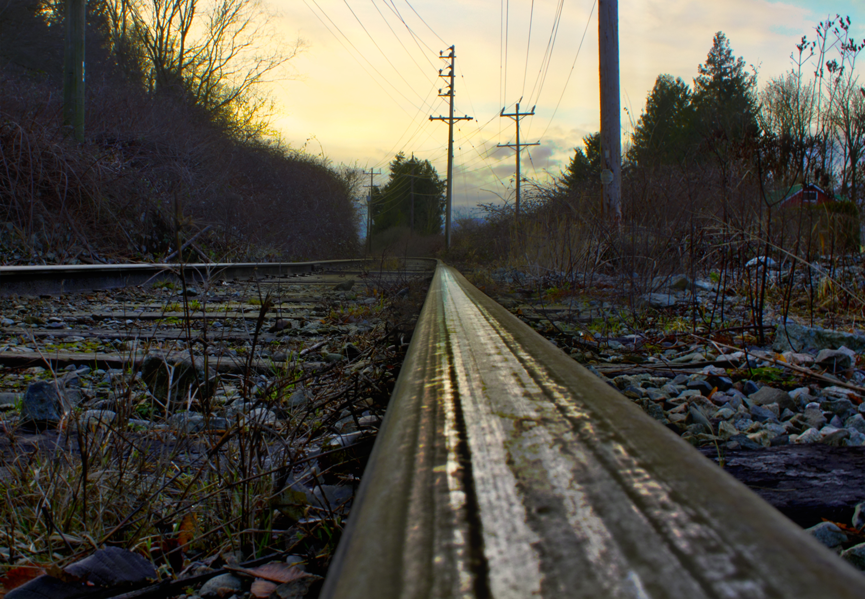 Stay On Track by TheArtOfaMadMan