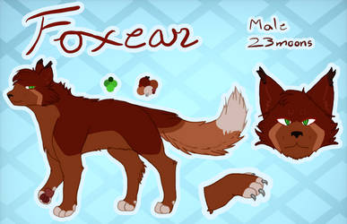 Foxear | Ref Sheet | The Fall by SpiritheartDraws