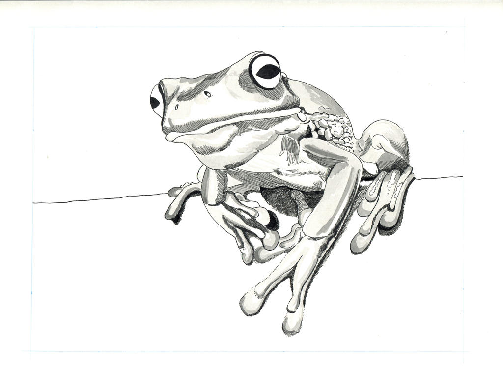 Black frog art - photo#17