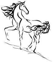 Horse by mahorela