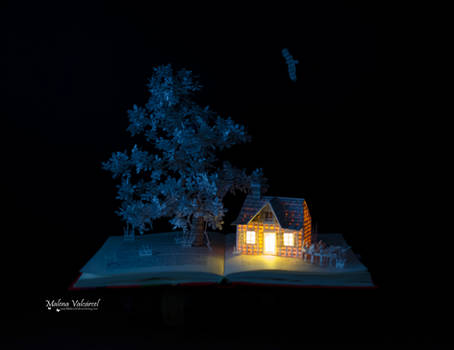 Reading in the Clouds -  Book Arts