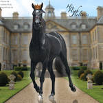 HEE Horse Avatar. - His High Holiness