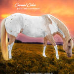 HEE Horse Avatar -  Carmal Color