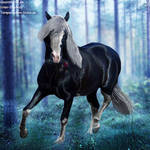 HEE Horse Avatar - Bubbles
