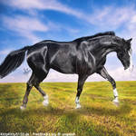 HEE Horse Avatar - Dancin' With Death