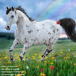 HEE Horse Avatar - Rainbow