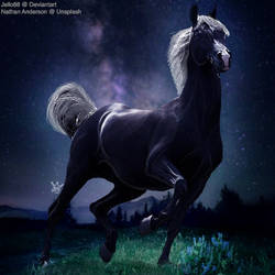 HEE Horse Avatar - Amazing Grace