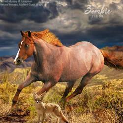 HEE Horse Avatar - Zombie