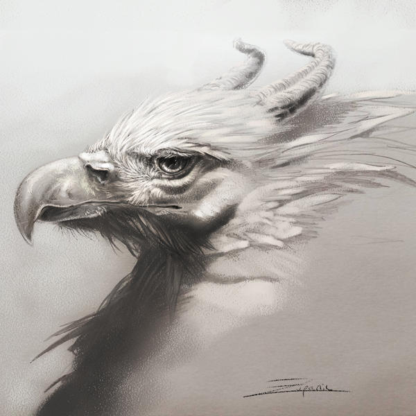 Griffin Study by InuRyoko