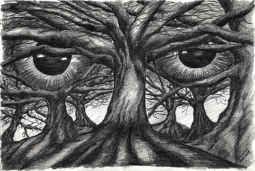 0325 The forest has eyes