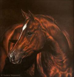 Flame by suzanastojanovic