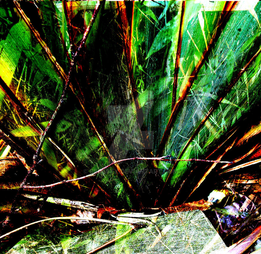 Rainbow Leaves Abstract 2 by bec66ky