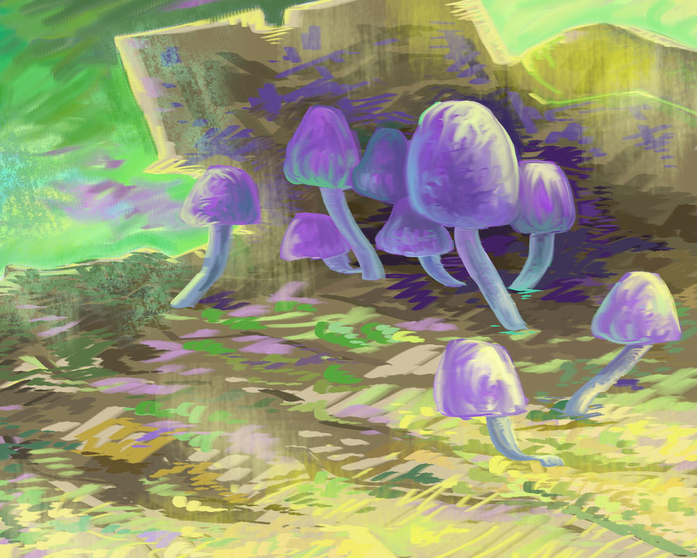 Mushroom study by XoXeL-V